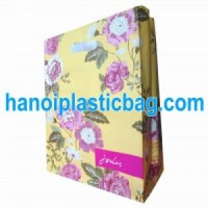 die cut circle handle bag LDPE