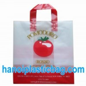Printed soft loop handle bags